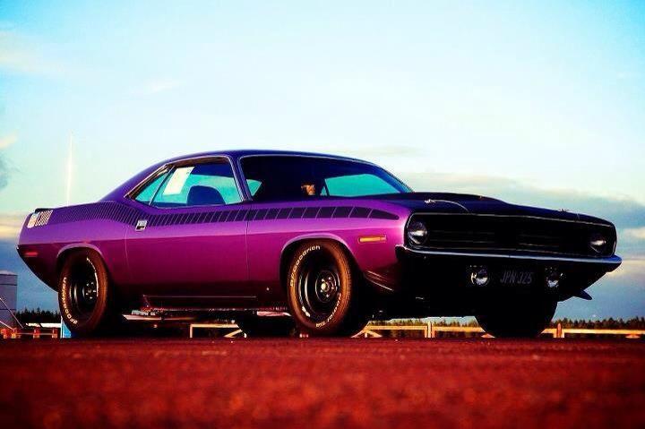Purple Dodge