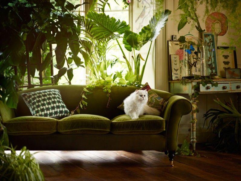 Green Velvet Sofa   Google Search