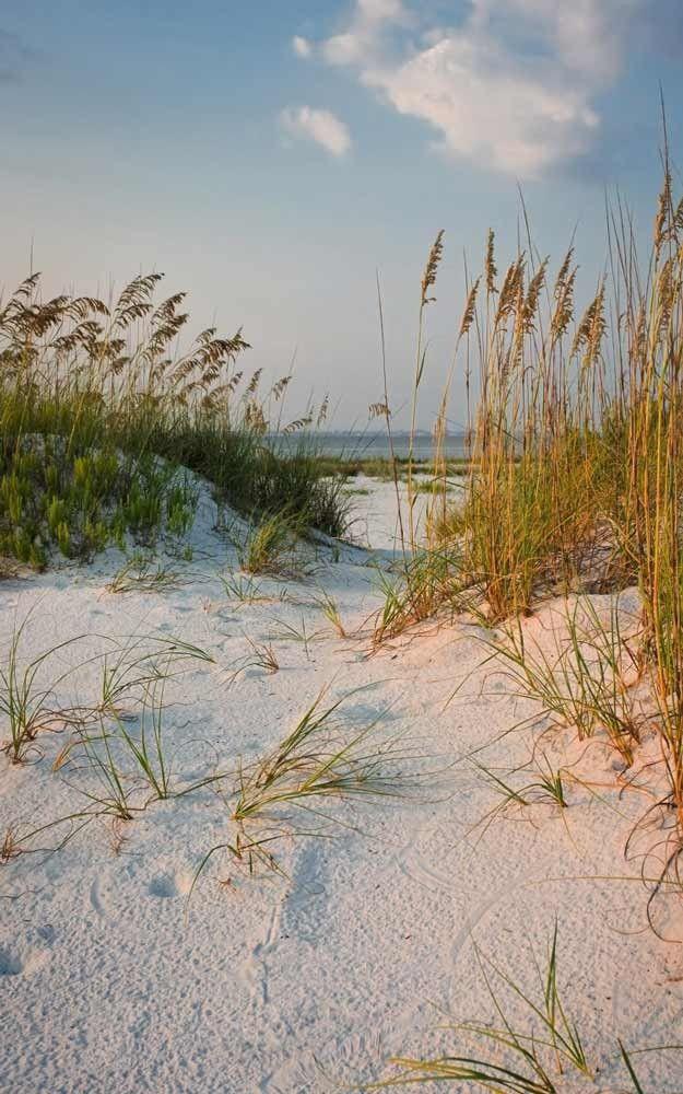derriere les dunes poster trompe l 39 oeil dune de sable l 39 oc an escale en bord de mer. Black Bedroom Furniture Sets. Home Design Ideas
