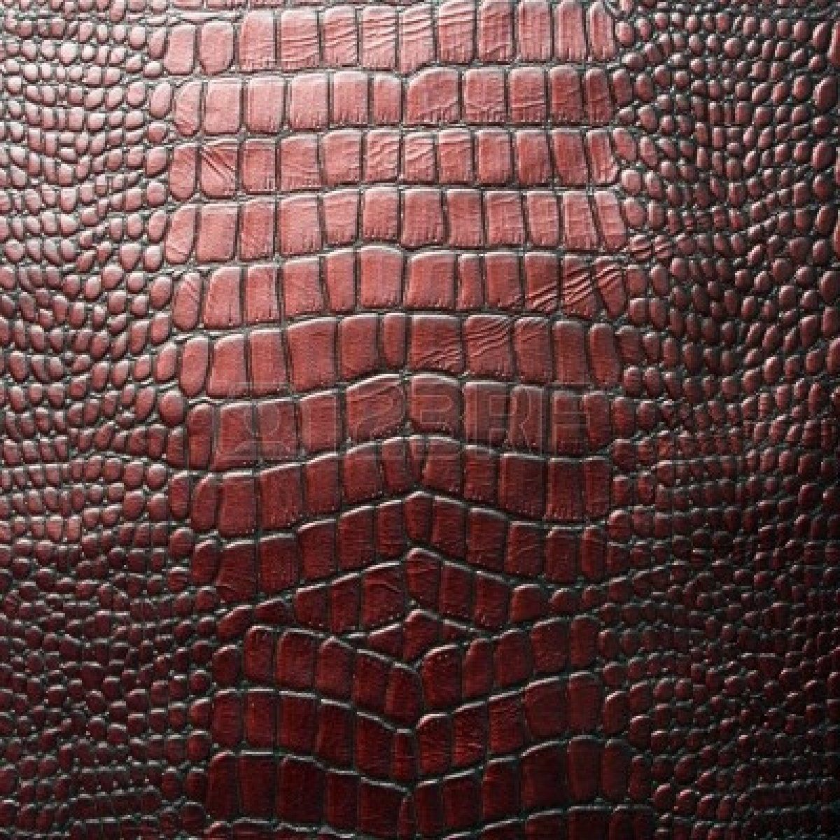 Crocodile leather texture | animal skins | Pinterest ...