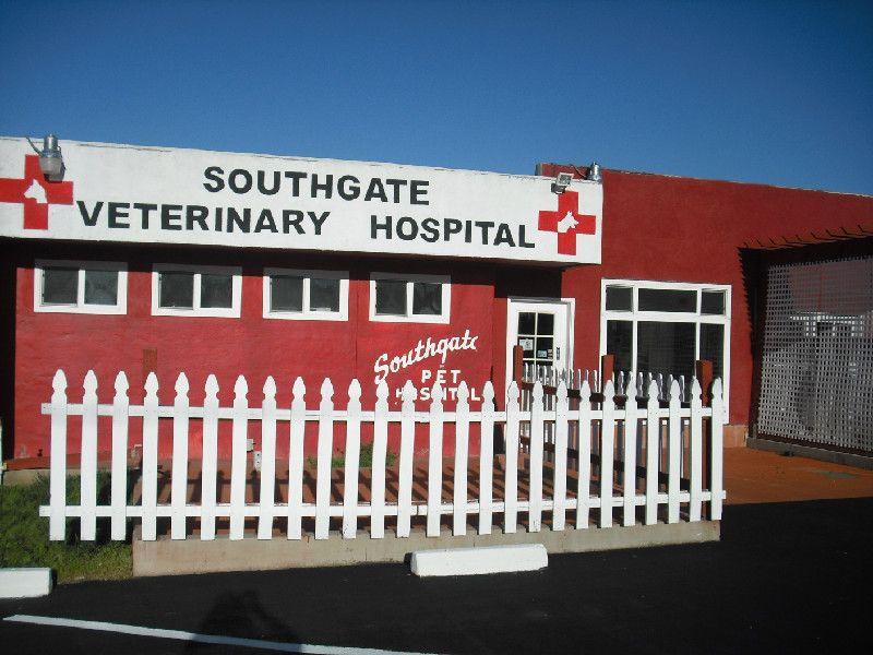 16+ Washington blvd animal hospital ideas
