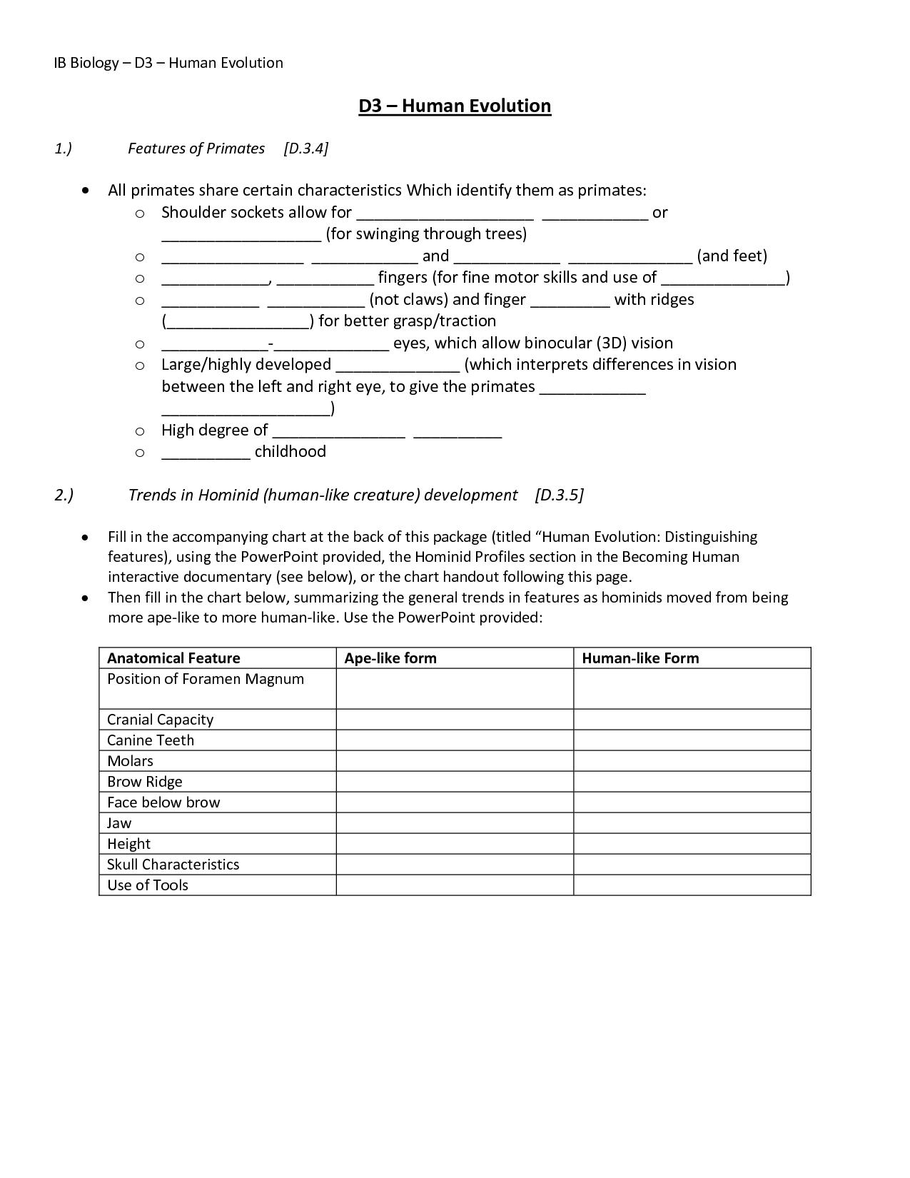 Dna Mutations Practice Worksheet