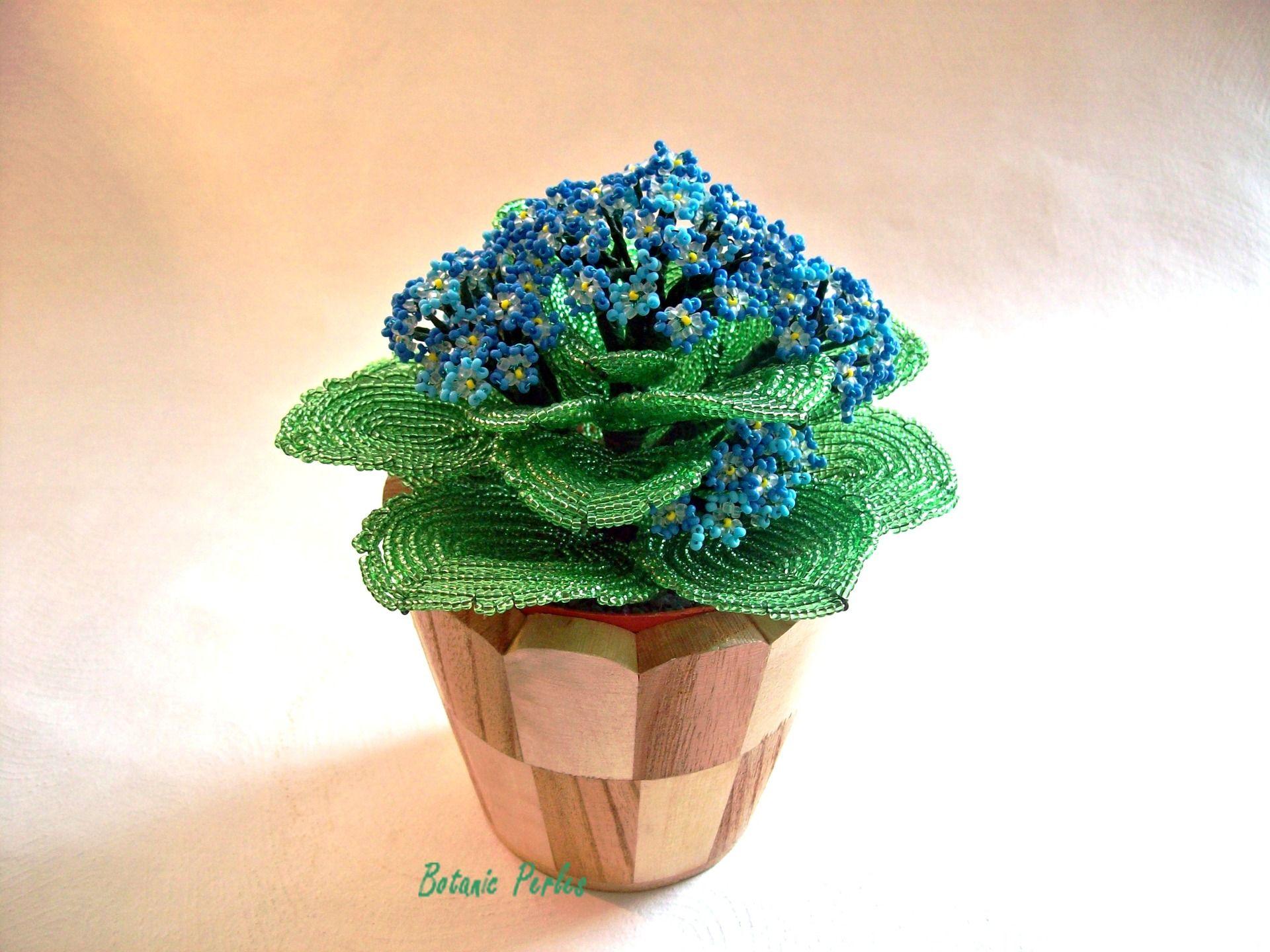 plante en perles crassulac e bleue grandeur nature cache. Black Bedroom Furniture Sets. Home Design Ideas