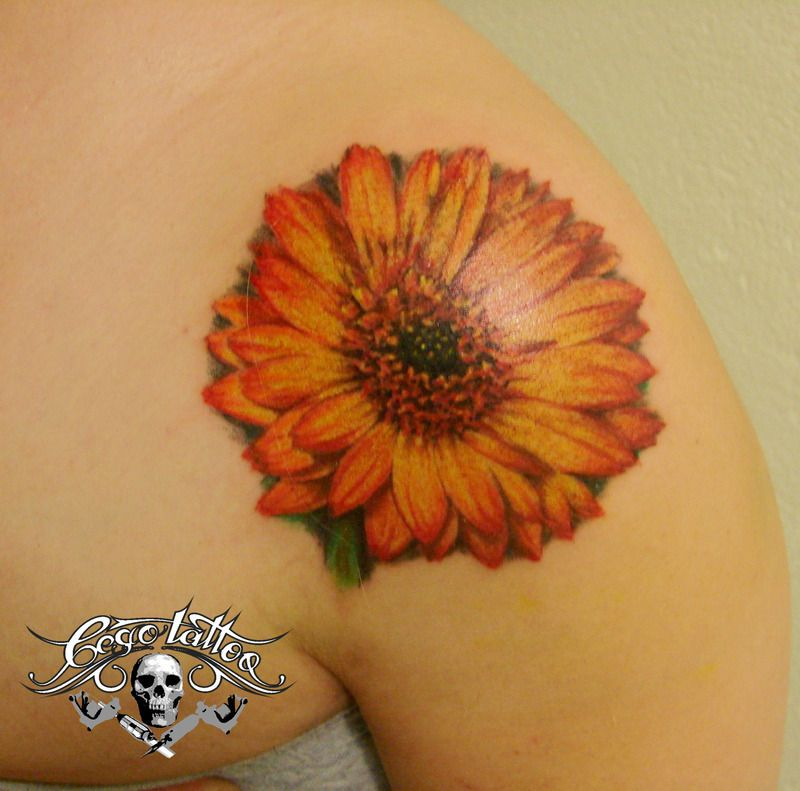 Gerbera Tattoo Pictures At Checkoutmyink Com Picture Tattoos Tattoos Daisy Tattoo