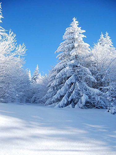 Lfeey 5x7ft Vinyl Thin Photography Background Winter Them Https Www Amazon Com Dp B01hemgvjk Ref Cm Sw Winter Scenery Winter Photography Winter Landscape