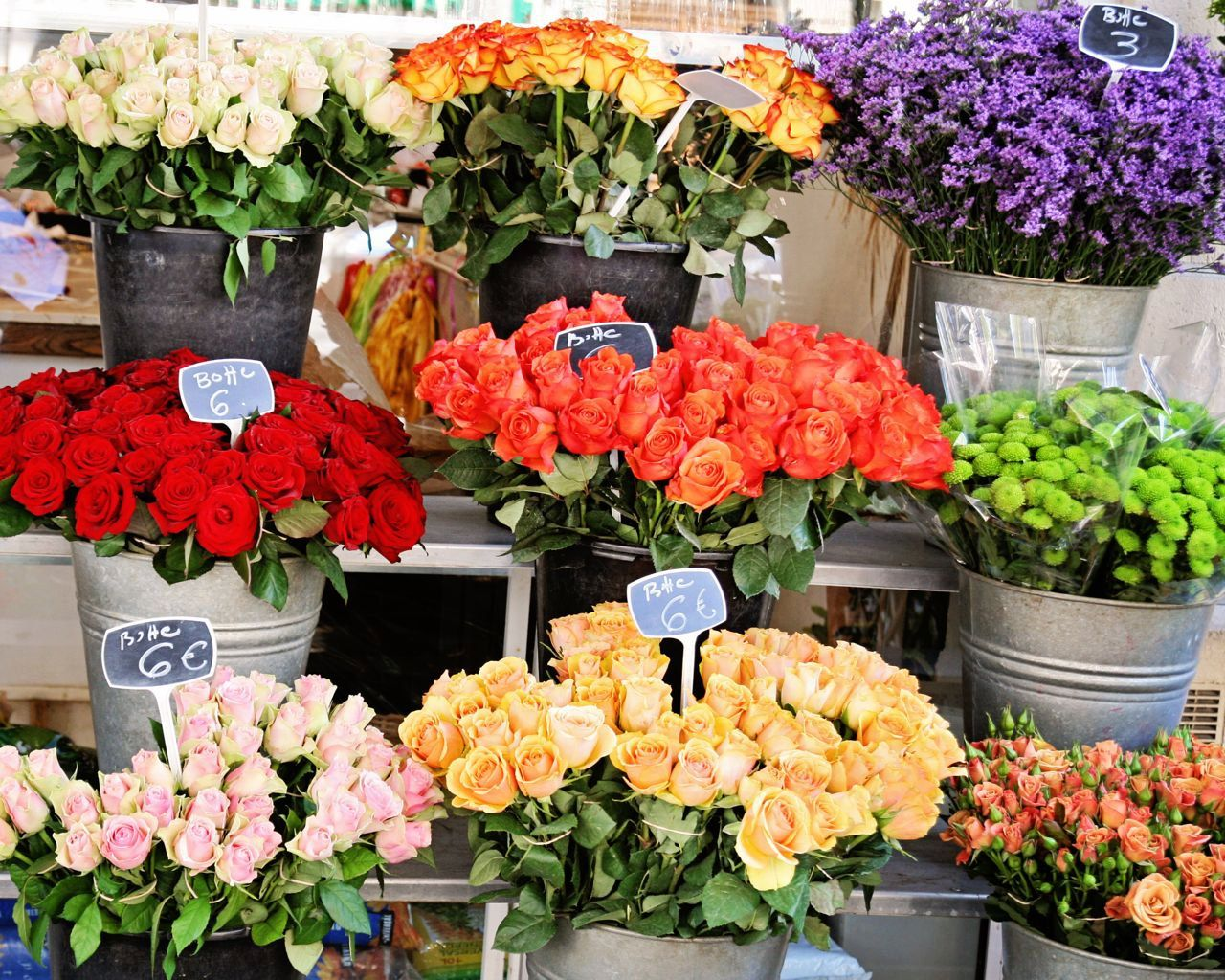 Flower Market in Paris Photograph Colorful French Home