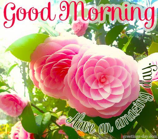 Good Morning Japanese Greeting : Good morning greetings pics http day