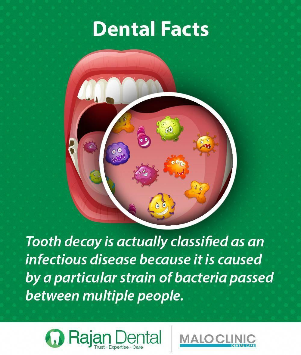 Dental Facts Tooth decay is actually classified as an infectious disease because it is caused by a particular strain of bacteria passed between multiple people. #disease #tooth #decay #bacteria #facts #ToothImplantHealthyTeeth