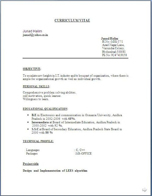 Best Executive Resumes Free Download Sample Template Example