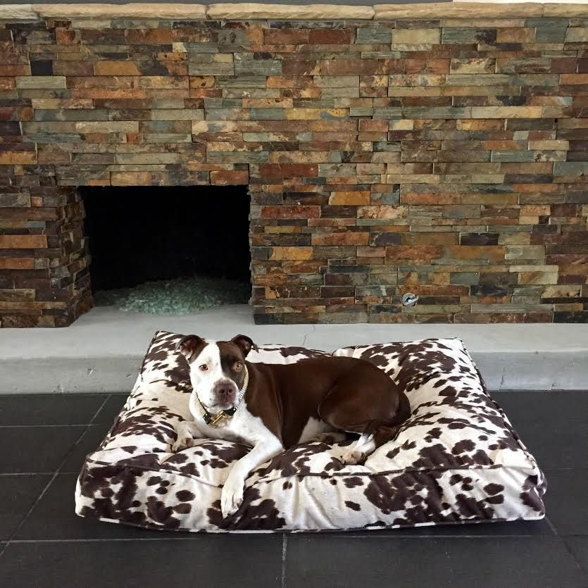 Animal Print Rectangle Bed Big dog beds, Animal print
