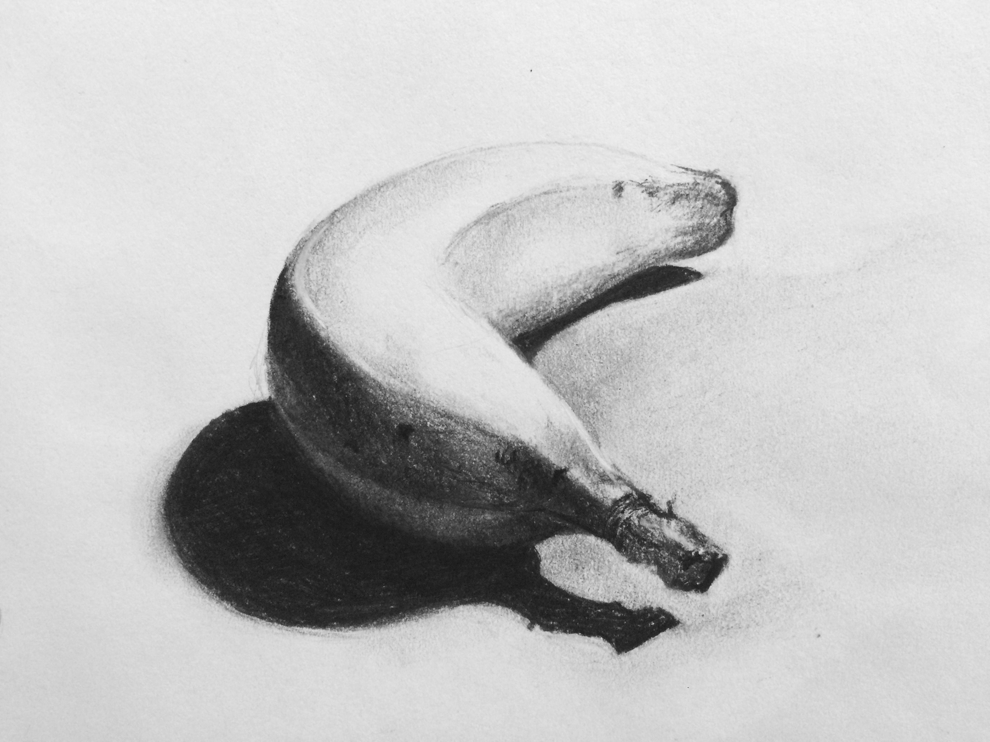 this banana study was completed in charcoal as part of drawing