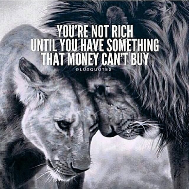 You Re Amazing Animals: You're Not Rich Until You Have Something That Money Can't