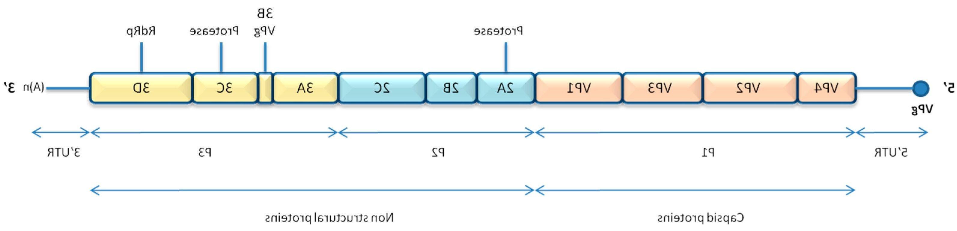 Beautiful Devis Bricoman Periodic Table Diagram