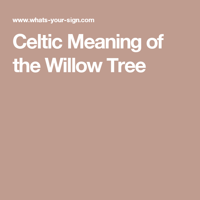 Celtic Meaning Of The Willow Tree Tree Symbolism