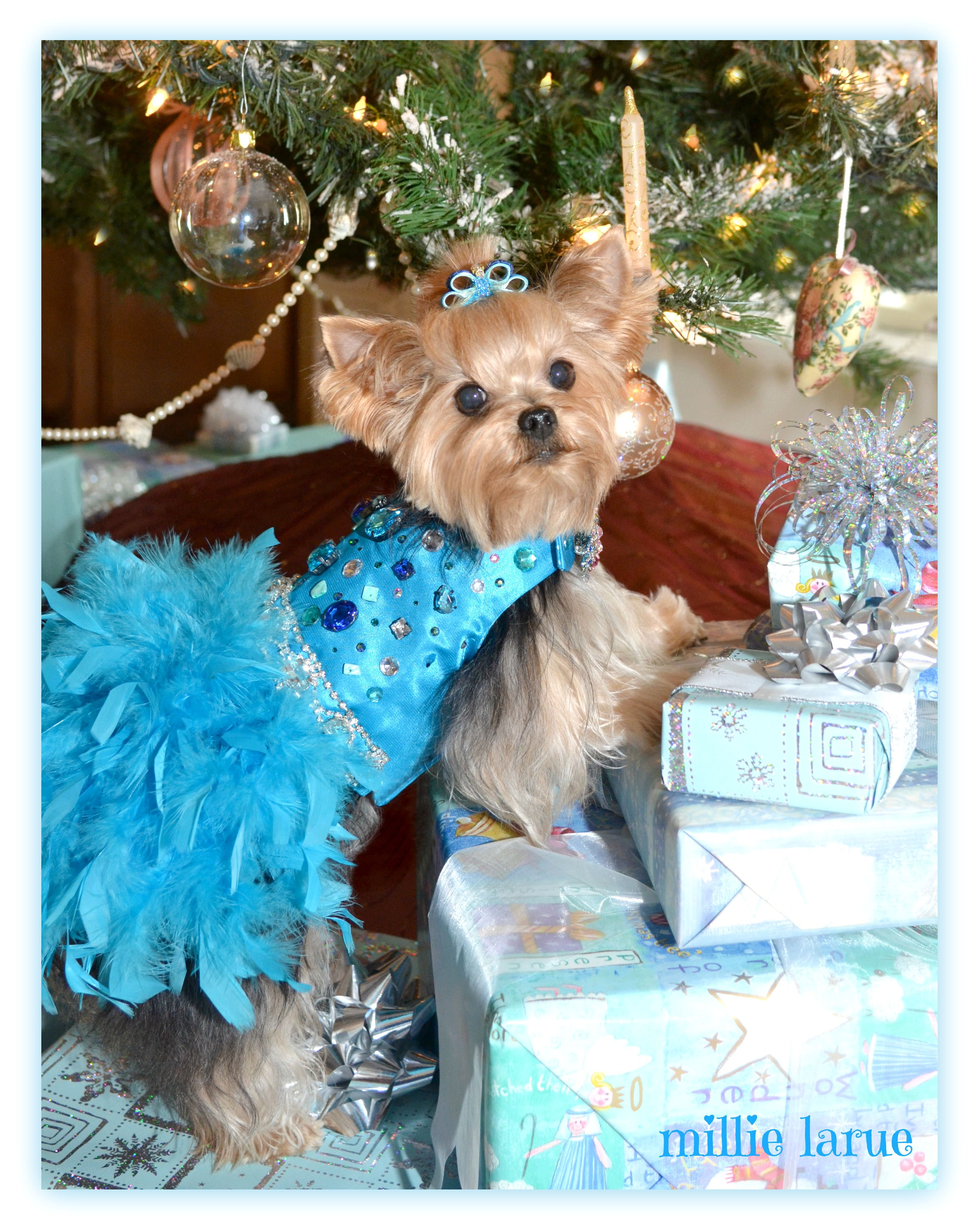 I\'ll have a BLUE CHRISTMAS without you... www.millielarue.net   I ...