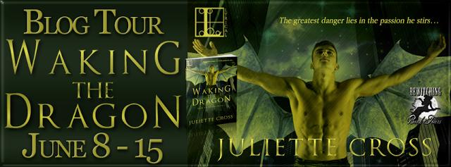 Chosen By You Book Club: Blog Tour Spotlight & Giveaway - Waking the Dragon...