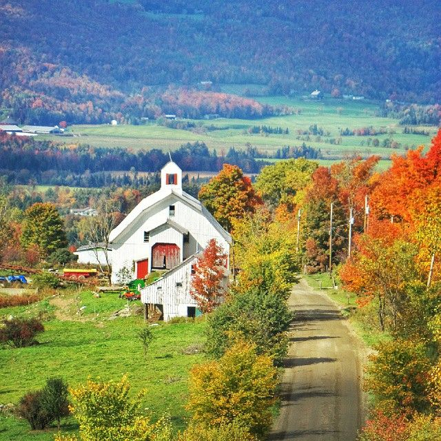 Barton, Vermont  #vermont #barton #fallfoliage #barn #autumn #newengland #yankeebarns