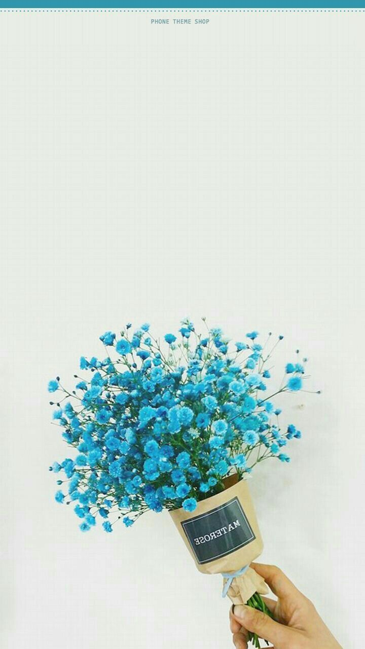 Aesthetic book. - BLUE