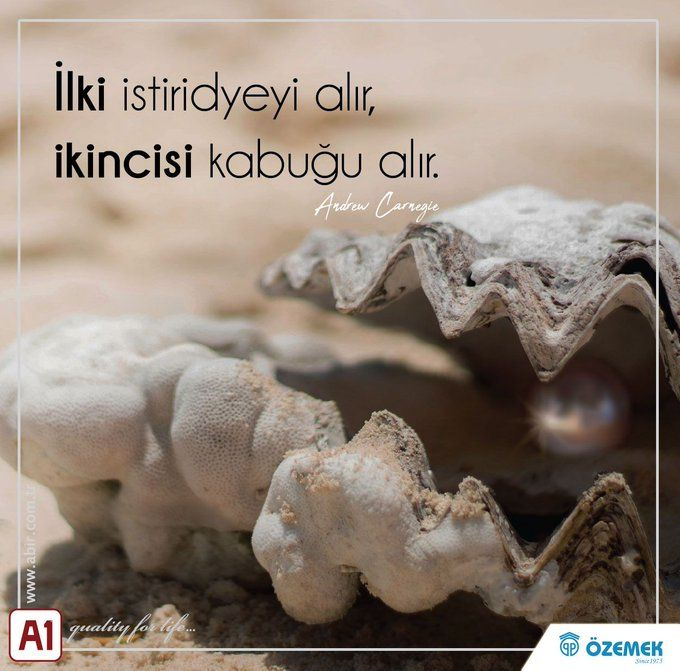 """""""The first takes the #ystirid, the second takes the #shell."""""""