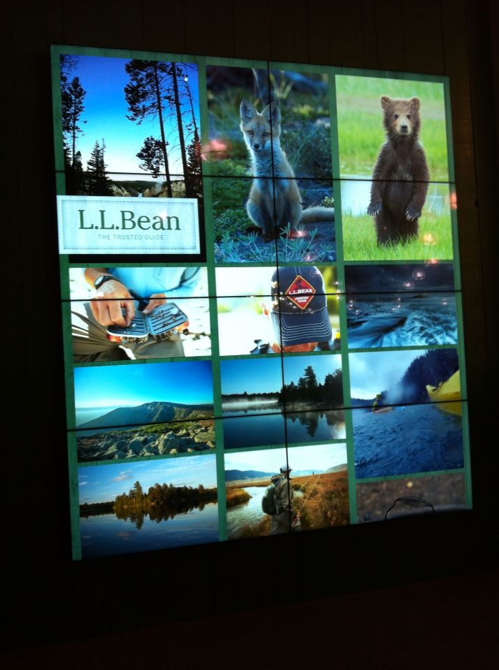 Your trusted guided is LL Bean