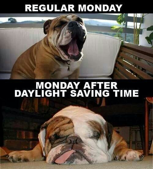 Monday After Daylight Saving Time Daylight Savings Time Humor Daylight Savings Time Daylight Savings