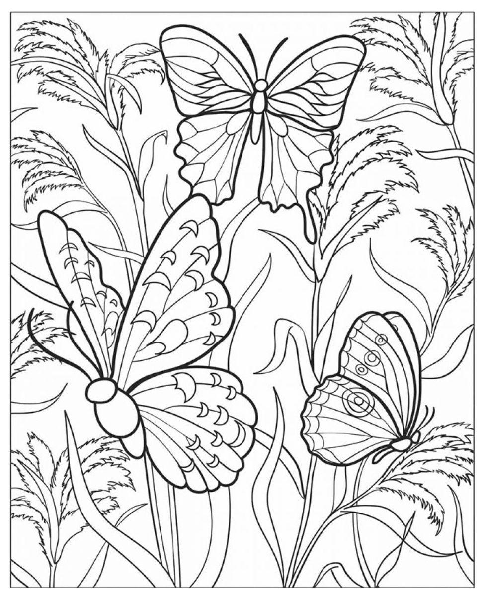 Pour imprimer ce coloriage gratuit coloriage difficile papillons cliquez sur l