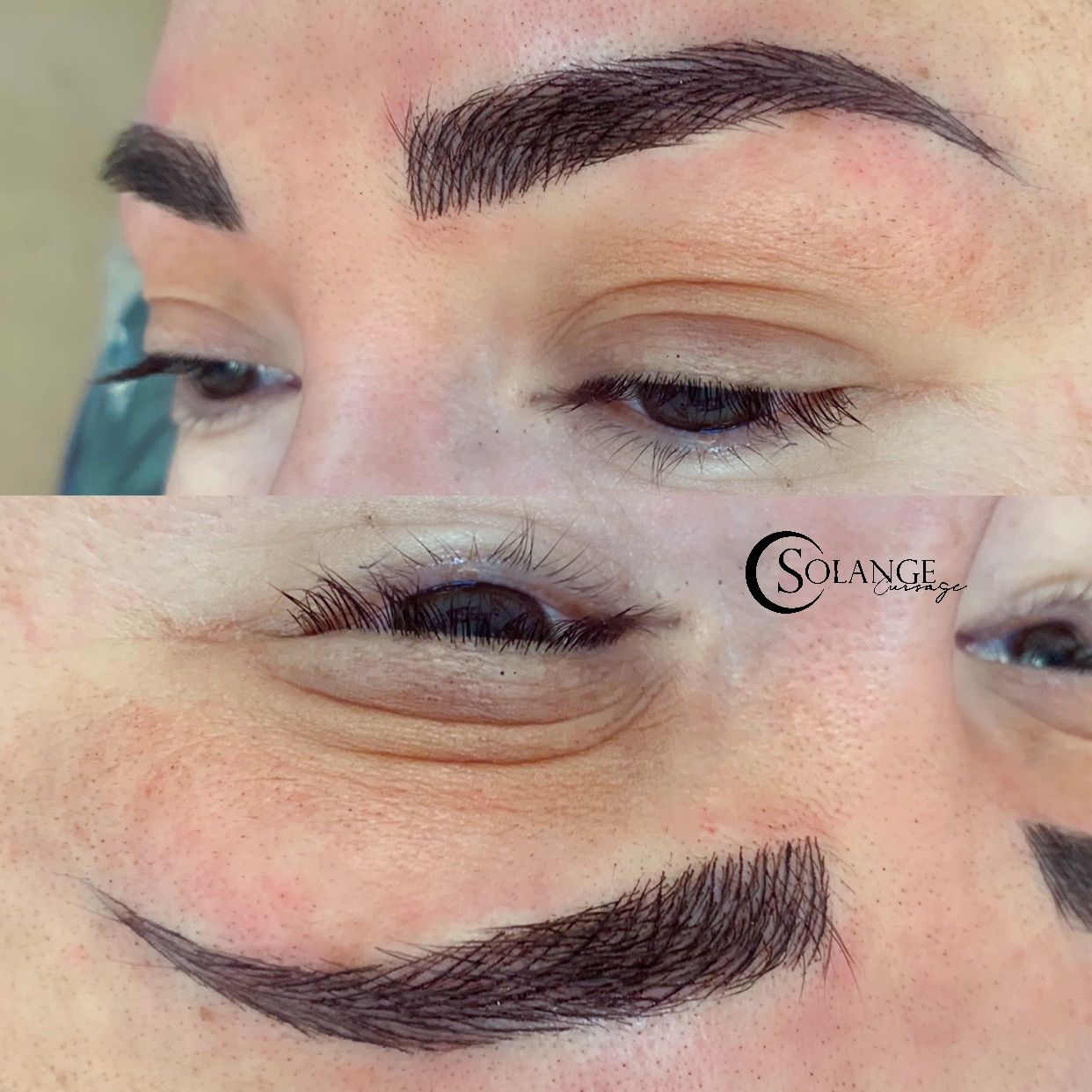 Pin by Sol Fernandes on Microblading by Solange Eyebrows
