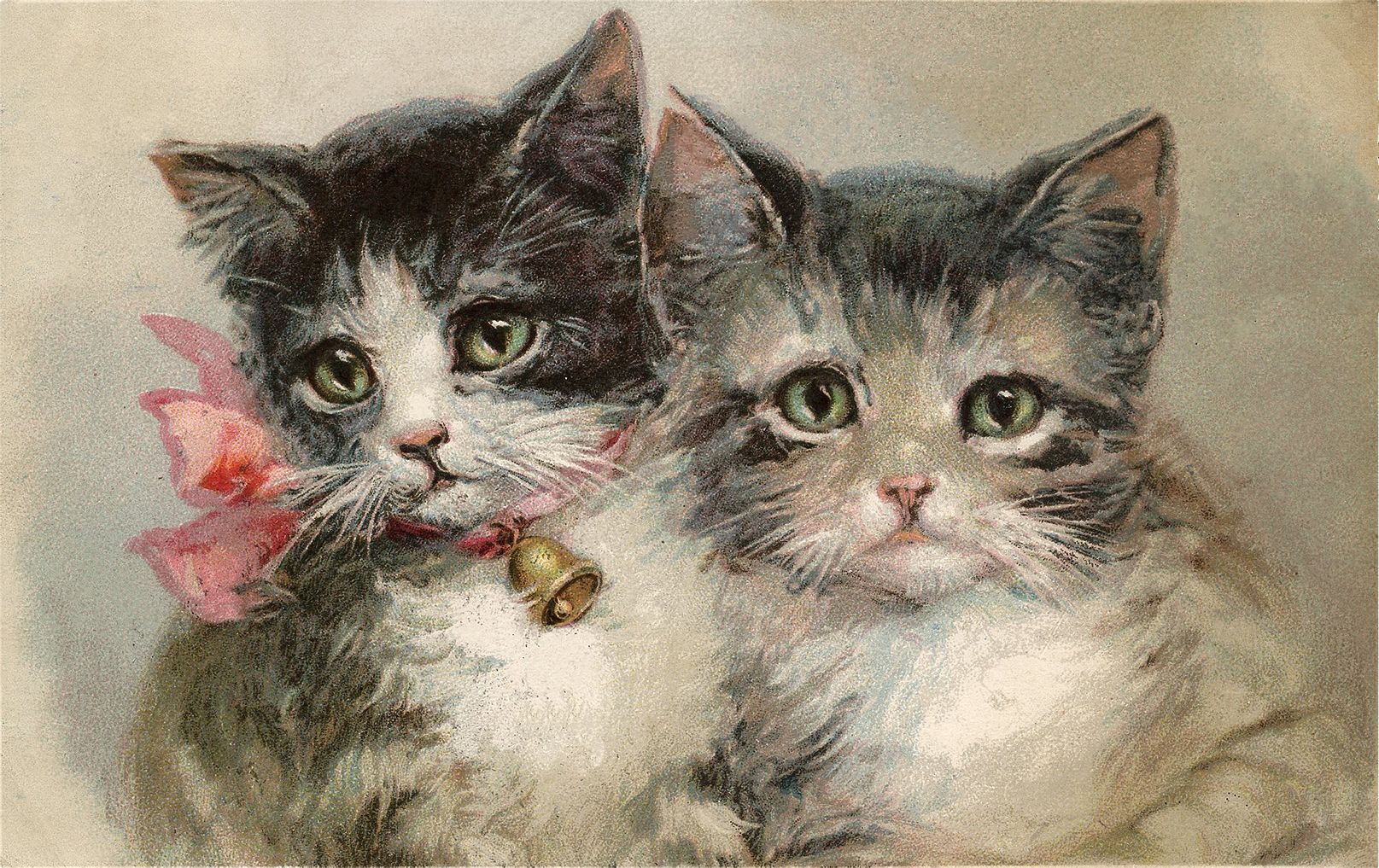 15 Beautiful Vintage Kitten And Cat Pictures Kitten Images Grey And White Kitten Vintage Cat