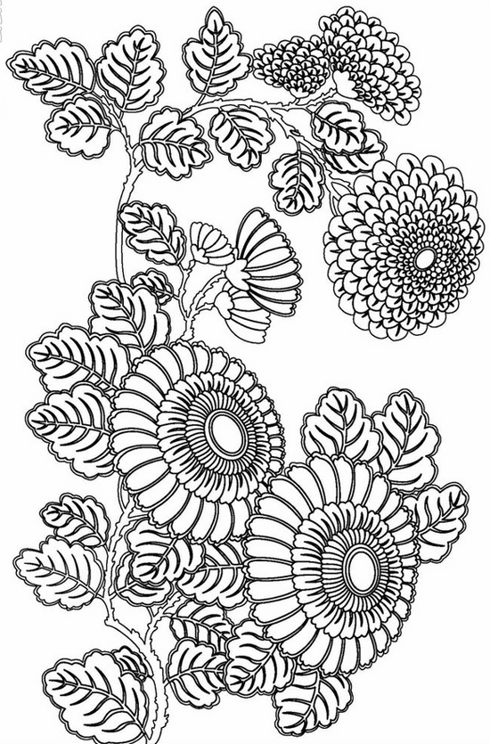 free printable coloring pages for adults advanced Google