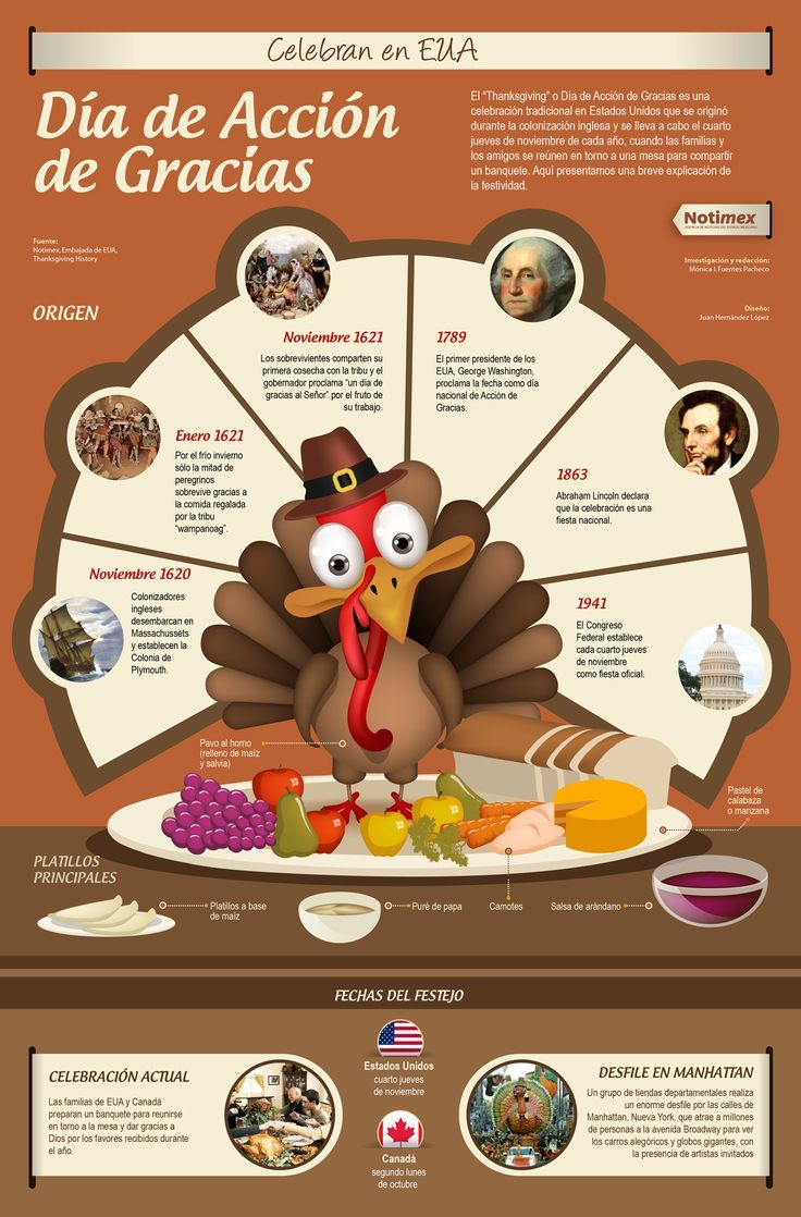 Qué se celebra en el Día de Acción de Gracias | Acción, Gracias y Día de