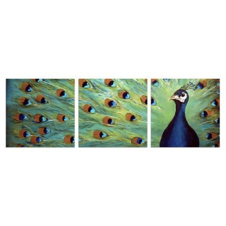 Stupell Industries Prized Peacock 3 Piece Triptych Canvas Wall Art Set    Walmart.com
