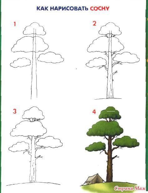 Tree Tutorial Bomen Tekenen Een Vogel Tekenen Leer Tekenen