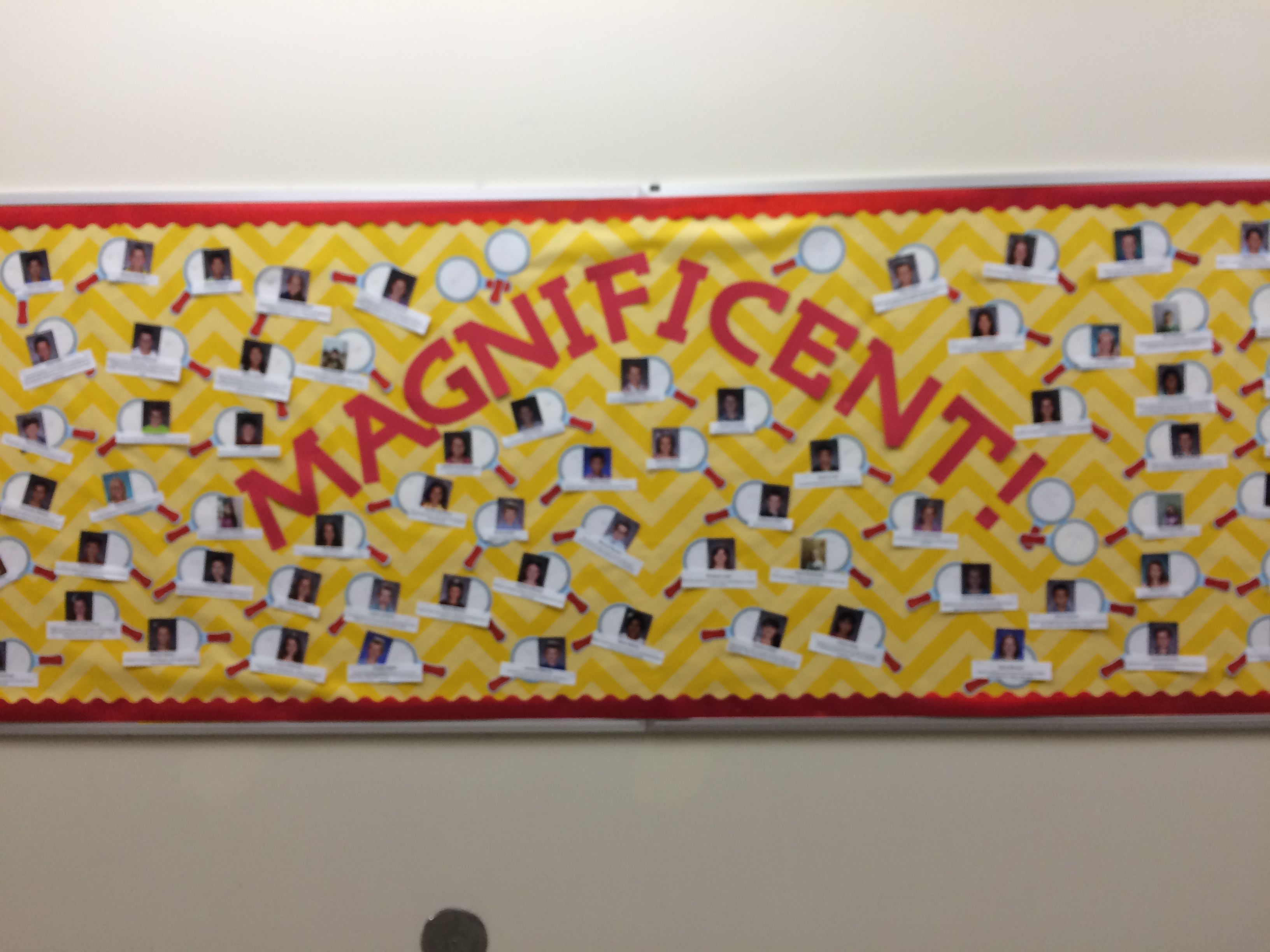 Magnificent! | School Bulletin Board Ideas (Wall of Fame) | Pinterest