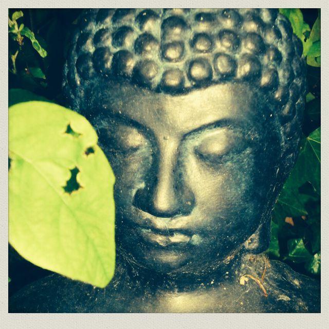 Fijne Boeddha in mijn tuin.