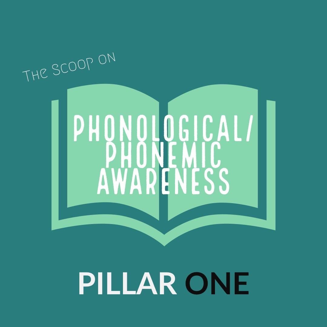 The Scoop On Phonemic Awareness