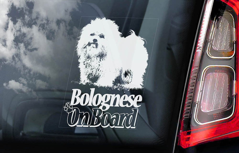 AMERICAN BULLY Car Sticker Bull Terrier Dog Window Sign Decal Gift Pet V03