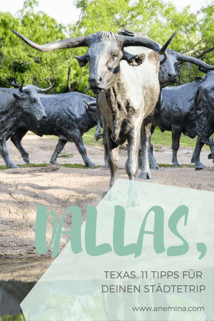 Der Miniguide für Dallas, Texas. Tipps und Tricks für eine Städtereise.