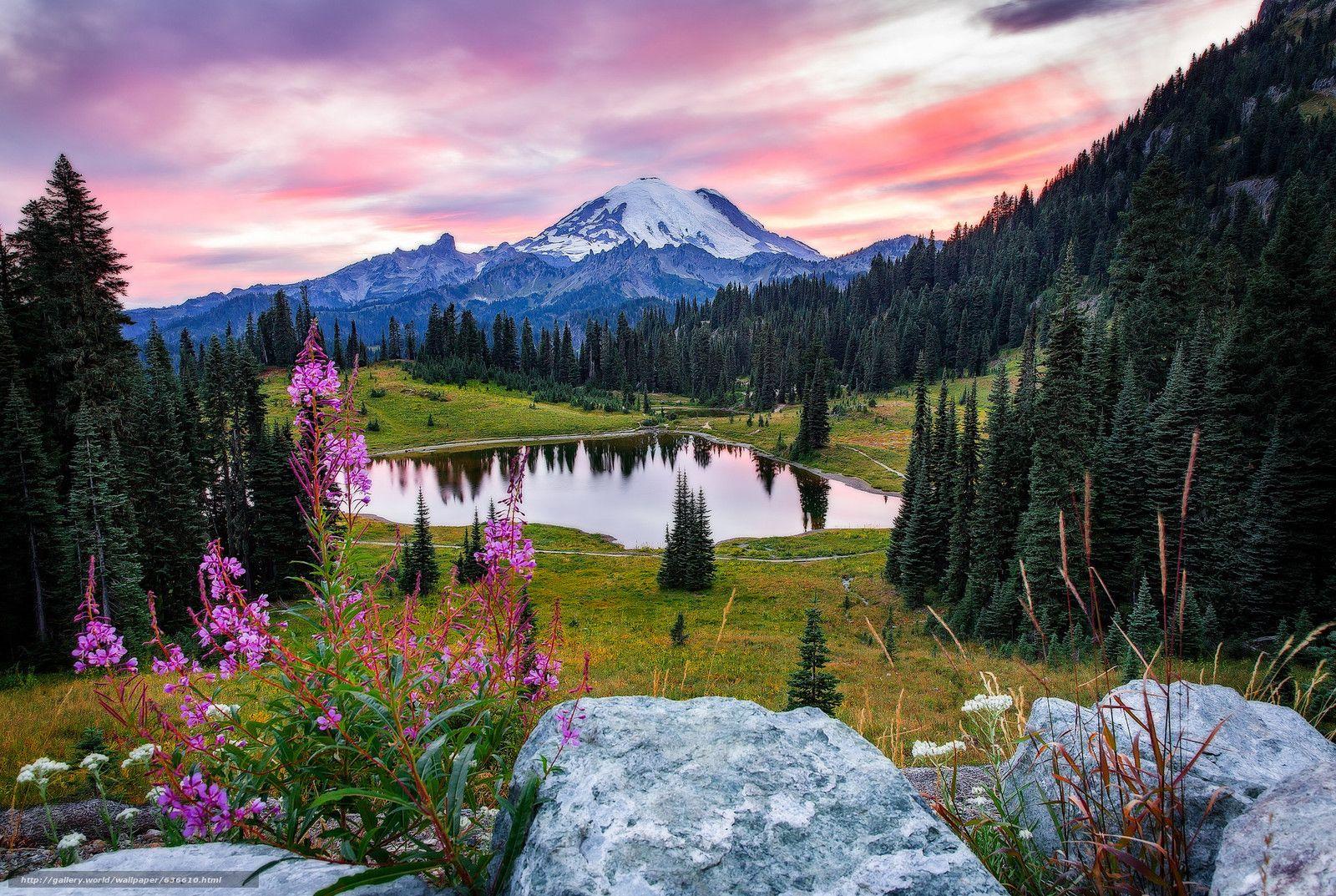 download wallpaper mount rainier national park, tipsoo lake, sunset