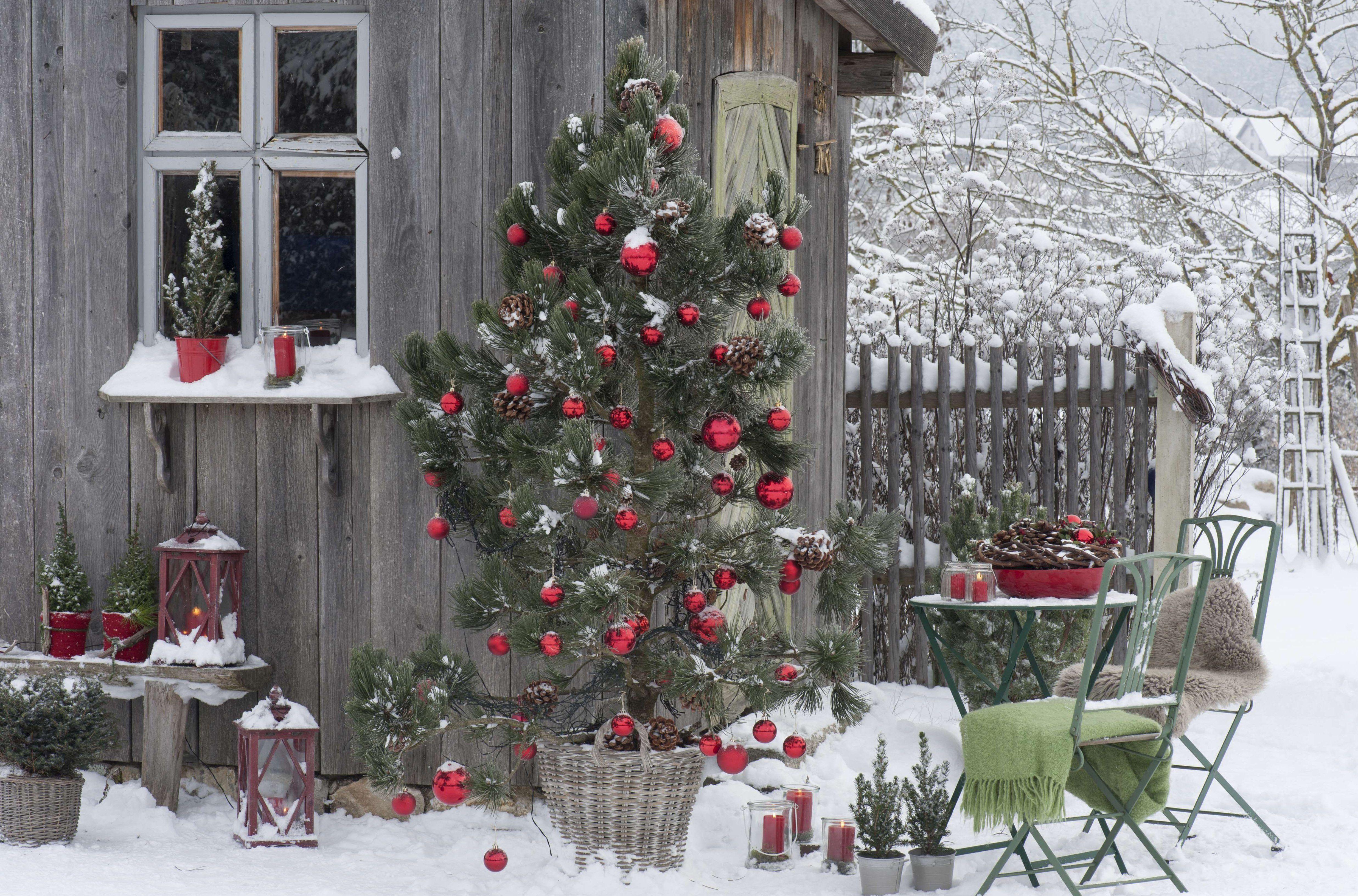 Weihnachtsdekoration Ideen Fur Schaufenster Eigenschaften Genial