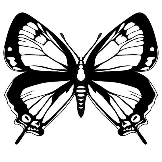 Decal 9 inch butterfly in pink silver white by ...