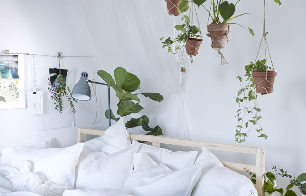Porta un tocco di verde in camera appendendo piante in vaso