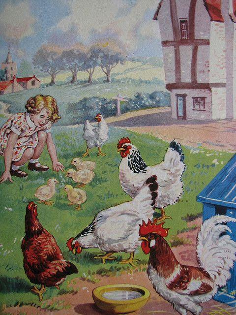 картинки кормят цыплят наших услуг продажа