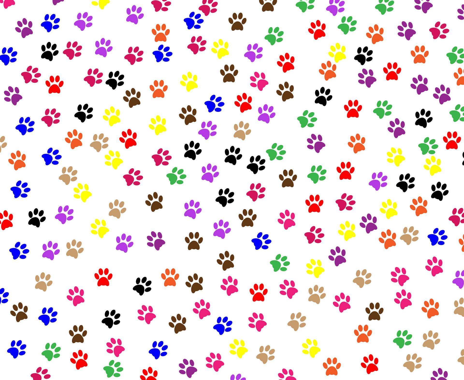 Paw prints background free stock photo hd public domain - Dog print wallpaper ...