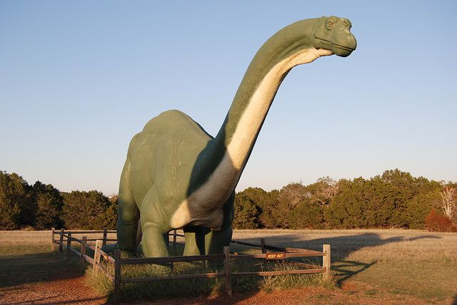 Official Lone Star State Dinosaur: Paluxysaurus Jonesi (replaces Brachiosaur Sauropod). Designated by HCR 16, 81st R.S. (2009) authored by Representatives Charlie Geren and Sid Miller and sponsored by Sen. Jane Nelson. [Image shows a Brontosaurus replica, and was taken by flickr user Tom Dill] Read the resolution at: http://www.capitol.state.tx.us/tlodocs/81R/billtext/pdf/HC00016F.pdf#navpanes=0