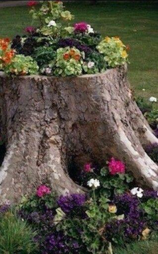 Decoracion Jardin Con Tronco Upcycle Garden Tree Stump Planter Front Yard Landscaping
