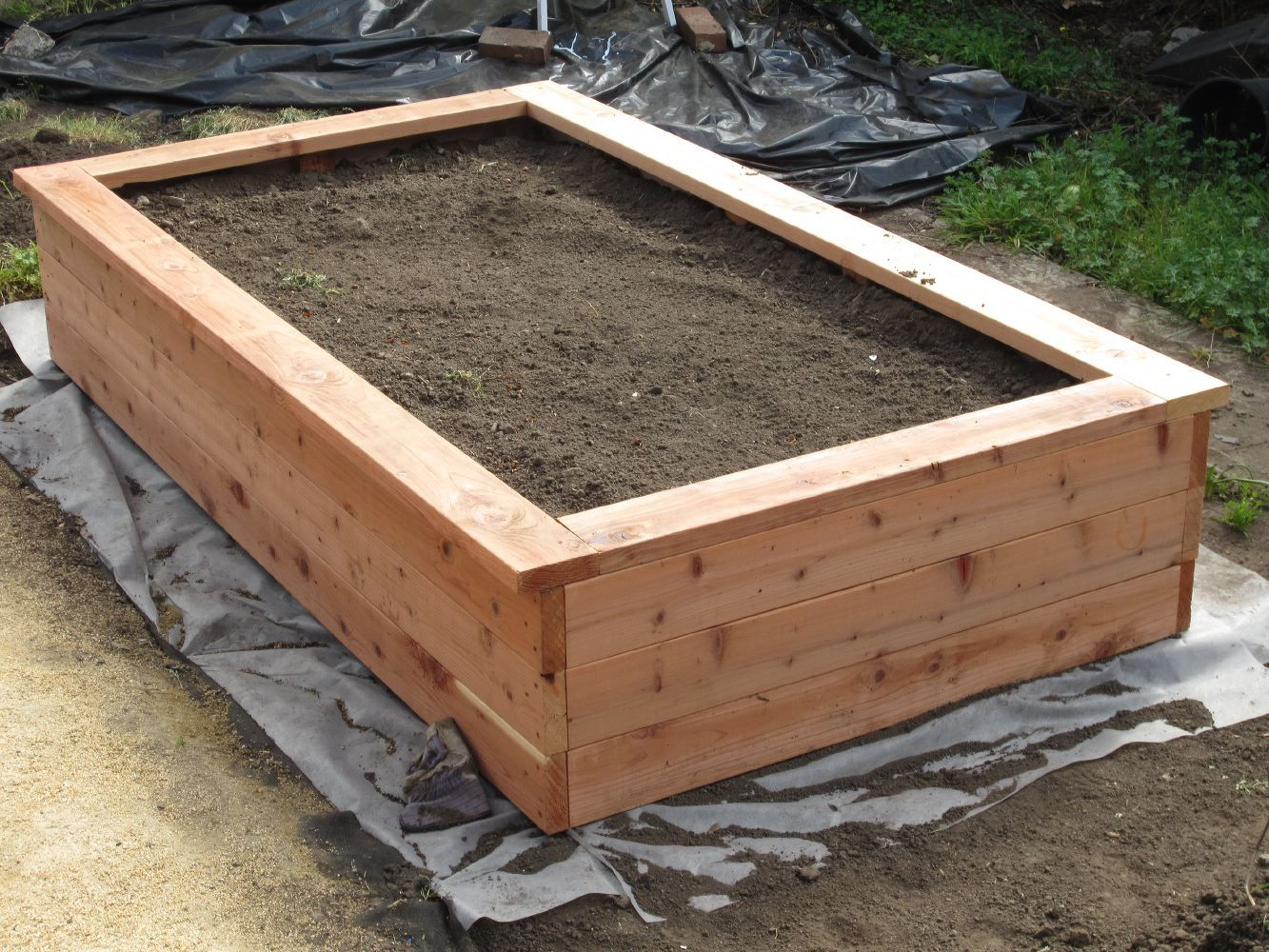 BUILDING A PLANTER BOX AND PLANTING FRUITS AND VEGGIES ...