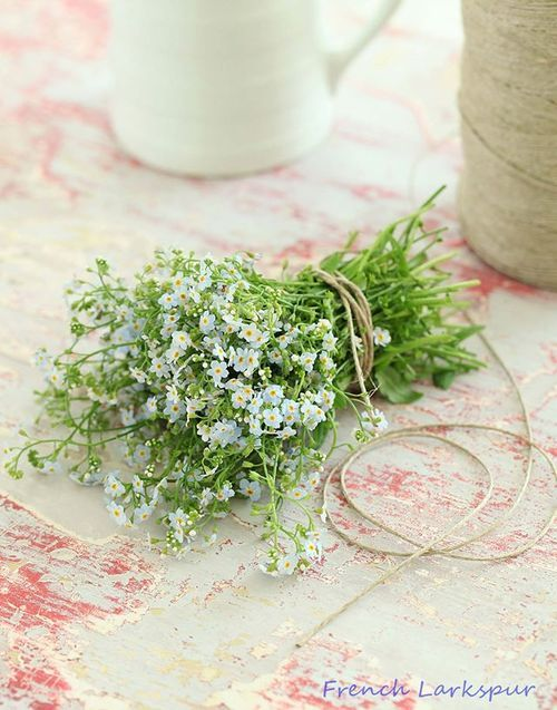 Source weheartit oh to live on a farm pinterest shabby flowers mightylinksfo