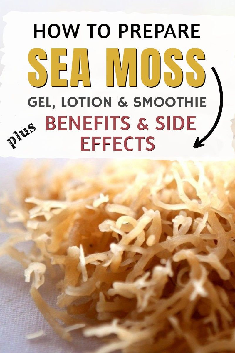 How To Make Sea Moss Gel Lotion And Smoothies At Home Sea Moss Seamoss Benefits Healthy