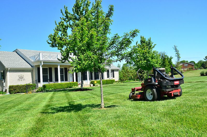 The results speak for themselves. landscaping lawncare