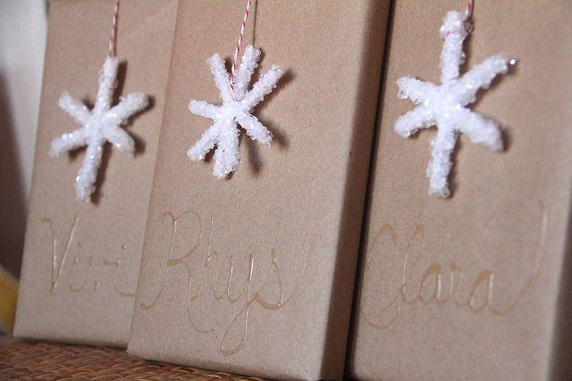 Borax Crystal Snowflakes   A Girl and a Boy